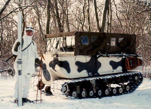 Army 10th Mountain Division Ski Poles USED U.S